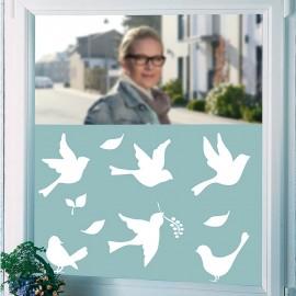 Folie translucidă pentru fereastră