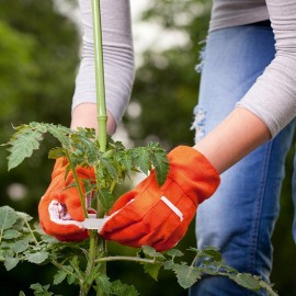 Clipuri grădinărit pentru plante - Betterware